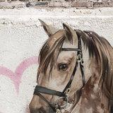 Behang paard detail